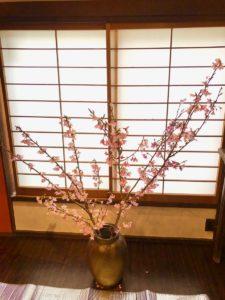 3/20 春を楽しむ会